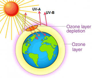 WORLD OZONE DAY: A call to protect the ozone layer