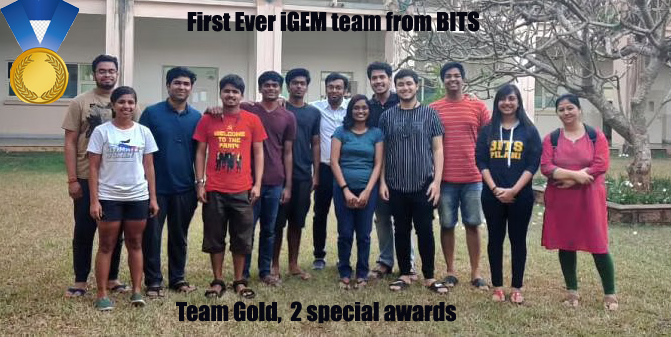 BITS Pilani Goa shines at   iGEM 2020, students win gold
